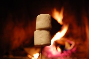Roasted-Marshmallows